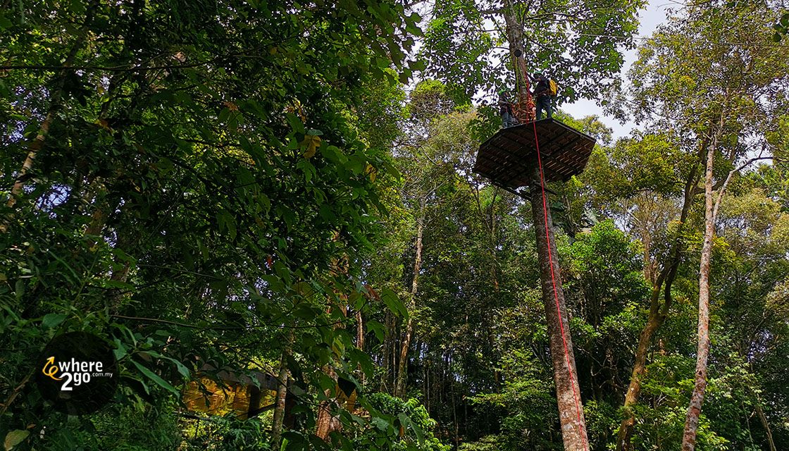 The Flight of the Colugo Zip