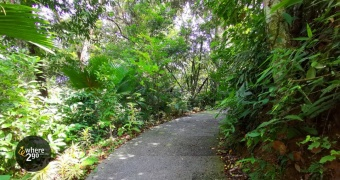 The Habitat Nature Trail